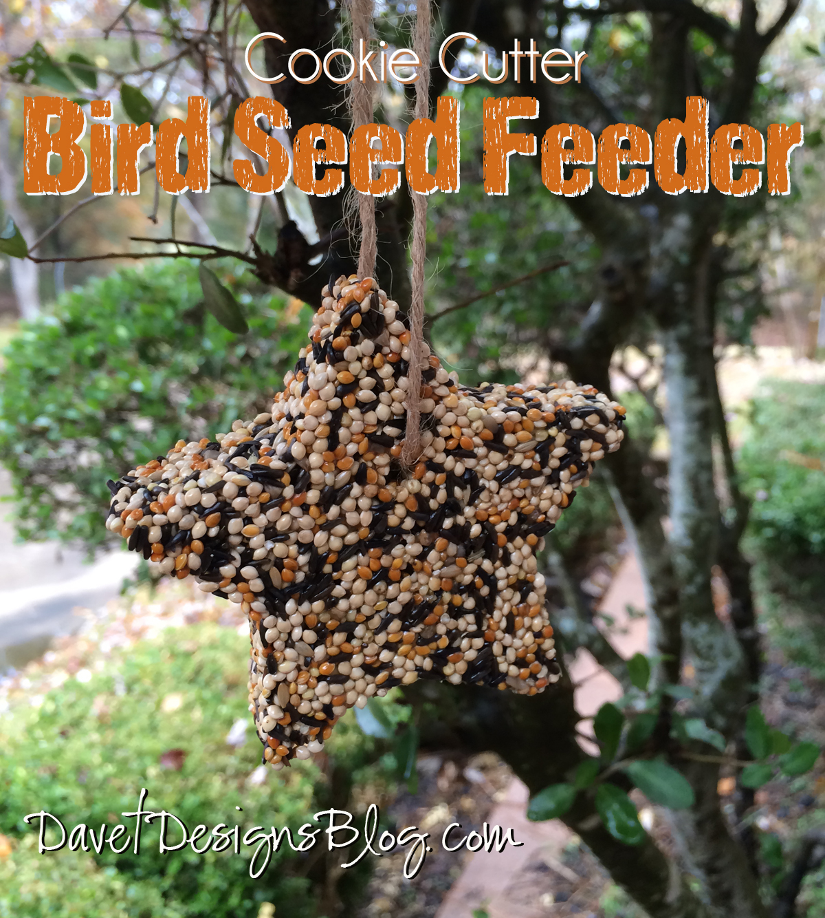 Cookie Cutter Bird Seed Feeder Ornaments